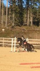 Agent Horse